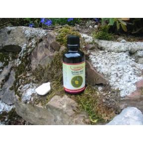 Tinktura iz srčne moči, (Potentilla erecta)   50 ml
